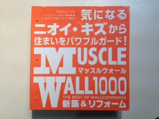 musclewall1.JPG